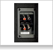 EBR-M10DX: Bassreflex Basskiste mit praktischen Push Terminals für schllen Einbau