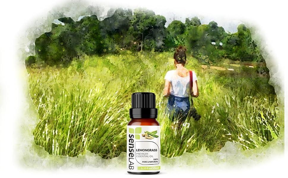 lemongrass essential oil senselab essential oils