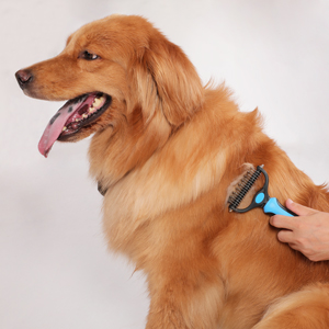 Use The Pet Dematting Grooming Comb Correctly Step 2