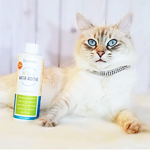 Our cat dental water solution makes caring for your cat's teeth easy – just add to bowl or fountain.
