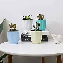 selfwatering planter for indoor plants