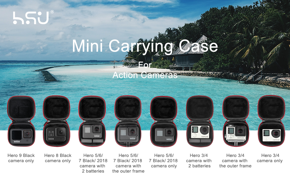 Mini Carrying Case Compatible with GoPro Hero 8/7/(2018)/6/5 Black,Session 5/4,Hero 3+