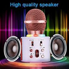 kid karaoke microphone