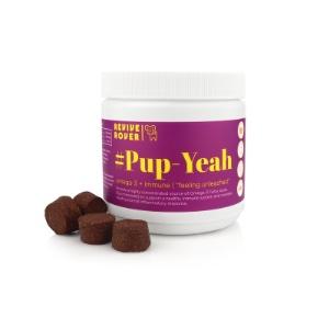 omega 3 for dogs, healthy dog, dog supplement, dog vitamins, revive rover, buddy budder, bark bistro