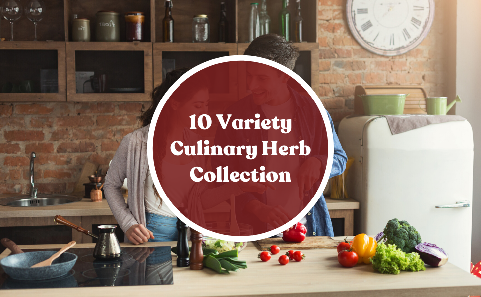 10 Variety Culinary Herb Collection