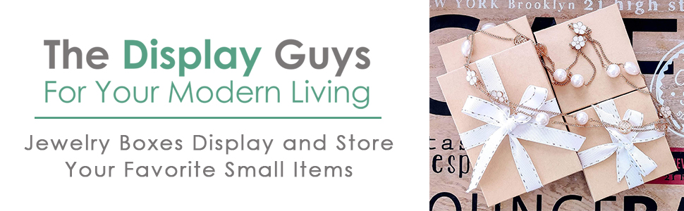 the display guys for your modern living