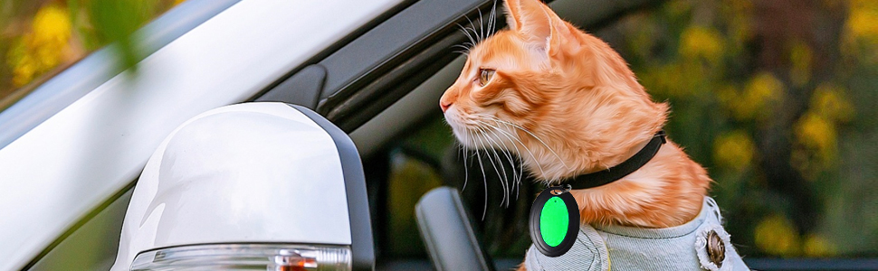 cat finder| dog finder| pet finder| key finder| lost key finder| locator tags| pet tracker