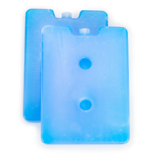 Two Large Ice Packs to keep your lunch cool and safe in your cooler bag system or lunch box