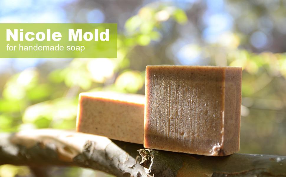 nicole mold