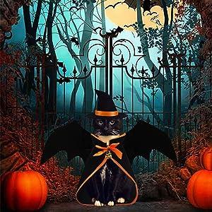 halloween cat wings