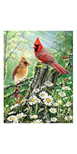 jigsaw puzzle, bird puzzle, outdoor puzzle