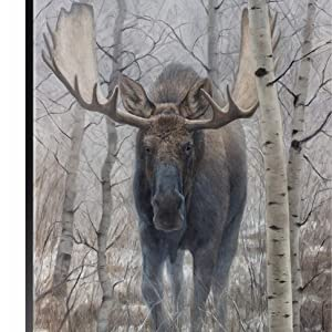 canvas out of the woods print moose