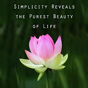 ZEN ME our story simple beauty all natural approach to beauty natural skincare