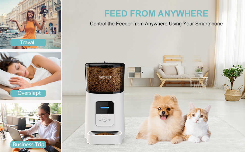 pet feeder with app
