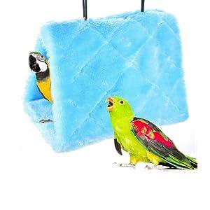 bird pent
