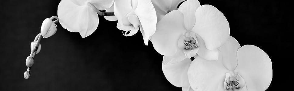 Memorial, sympathy, beautiful memorial gifts, memorial urns for ashes