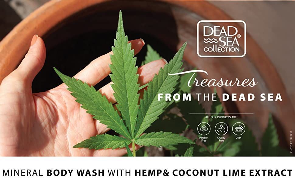 Dead Sea Collection, Hemp oil, Coconut oil, Lime extracts, natural minerals, body wash, shower gel