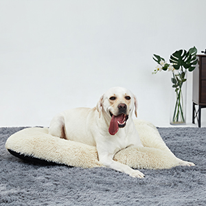 outsoor pet heating pad dog sleeper cushion odor control pet bed dog bed mats large