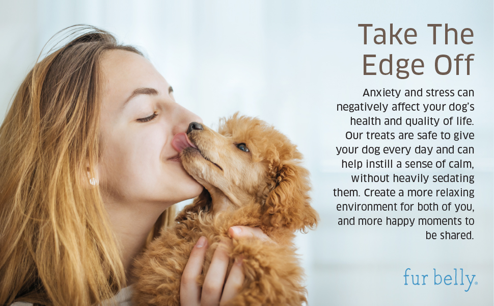 Treat anxiety and stress in your dog