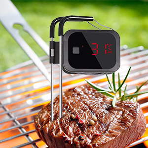 termometro per carne
