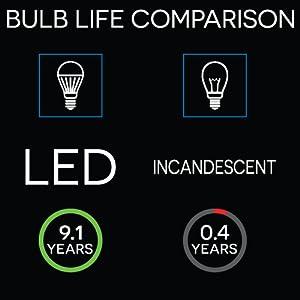 25 watt light bulbs