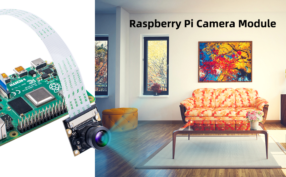raspberry pi 4 camera