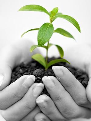 Compostable Eco Environmentally Conscious