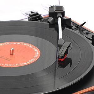 Play vinyl records