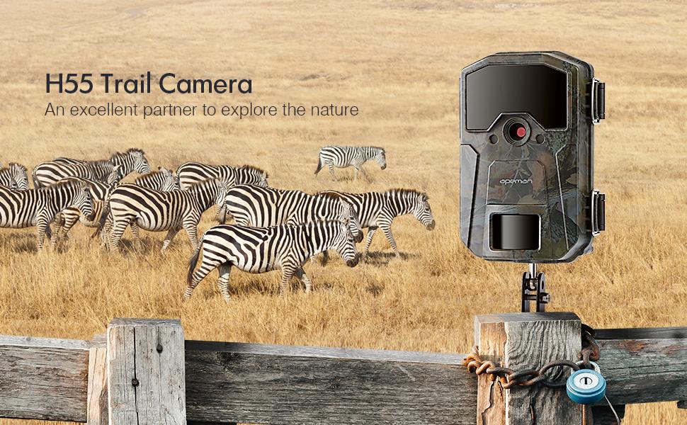 Apeman Vida Silvestre Trail Camera Trap 20MP 1080P con IR visión nocturna de hasta