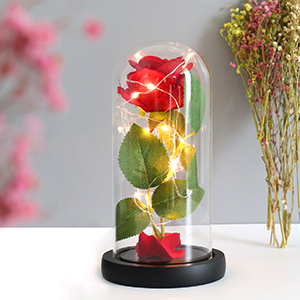 Beauty and The Beast Rose,Rose Kit,Red Silk Rose and Led Light in Glass Dome on Wooden Base