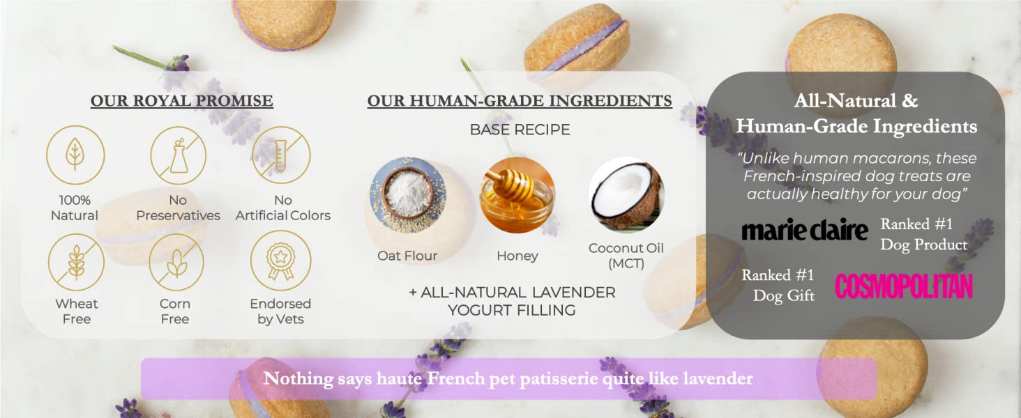 Dog Macarons macaroons lavender treats biscuit healthy all-natural USA Handmade Honey Coconut vets