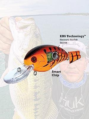 Livingston Lures - EBS Technology