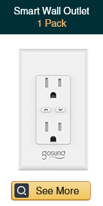 Smart Wall Outlet-1pack