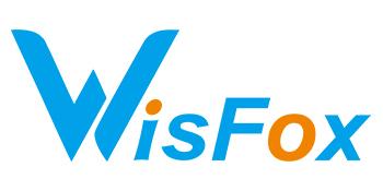 wisfox-mouse-senza-fili-mouse-ergonomico-wireless