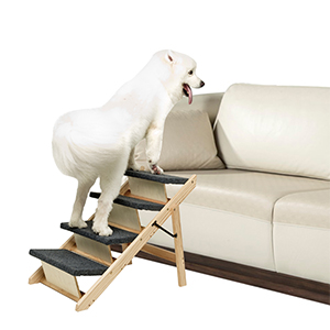 dog Steps for Beds and Cars