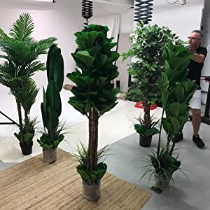 Home Indoor Garden Tree Home Decor Office Interior Decoration and Design GARDEN NATURE LOVERS