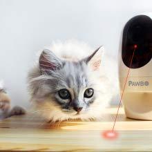 Pawbo Plus Cámara interactiva para Mascotas con tecnología Acer: cámara de Video HD WiFi con Audio bidireccional, con dispensador de golusinas y Puntero láser deseñado para Perros y Gatos: Amazon.es: Productos para