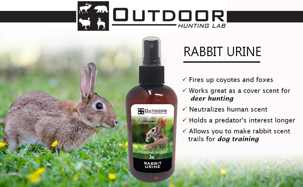 Rabbit Urine Scent