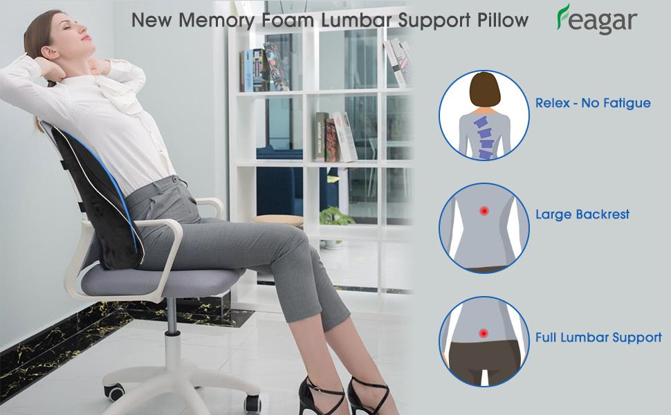 feagar lumbar support pillow