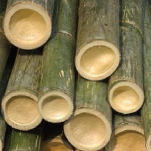 Cariloha men's underwear, bamboo underwear, men's underwear, underwear, boxers, bamboo boxers, men's