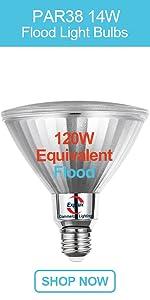 General Lighting PAR38 LED Flood Light Bulbs