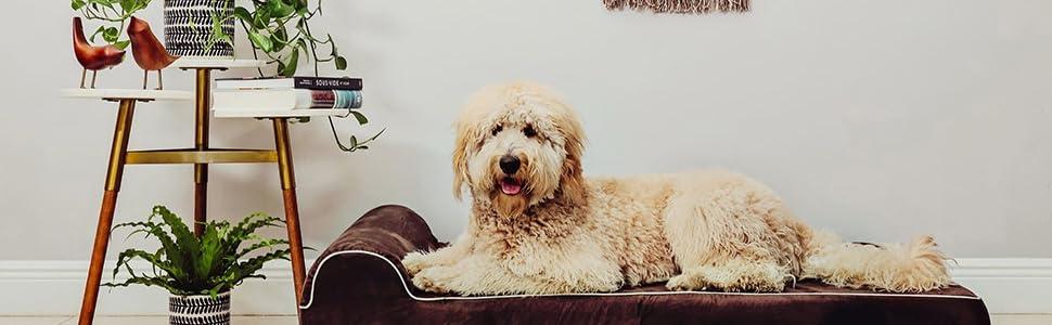 KOPEKS Cama Extra Grande para Perros Mascotas con Memoria ...