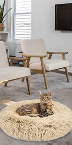 cat beds for indoor cats