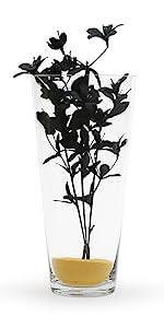 tapered vase cylinder