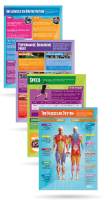 Set of 40 Physical Education Posters