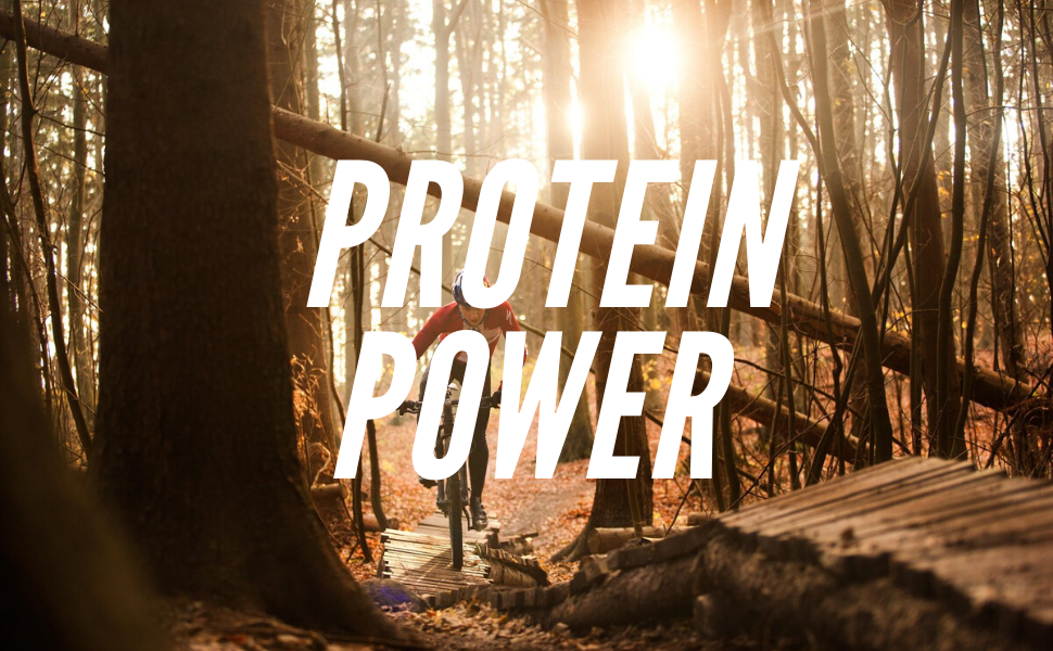 provide energy with protein