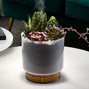 air diffusers for home