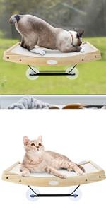 cat scracher