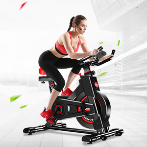 Dripex Exercise Bicycle
