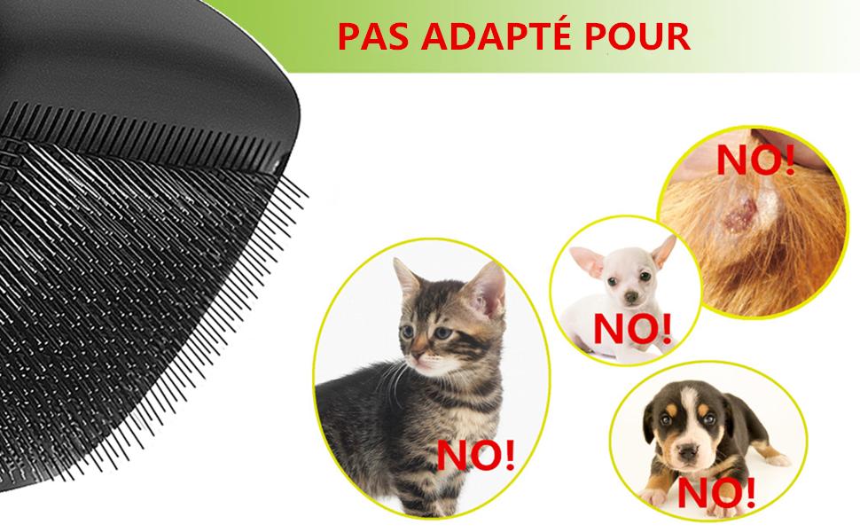 brosse à chat